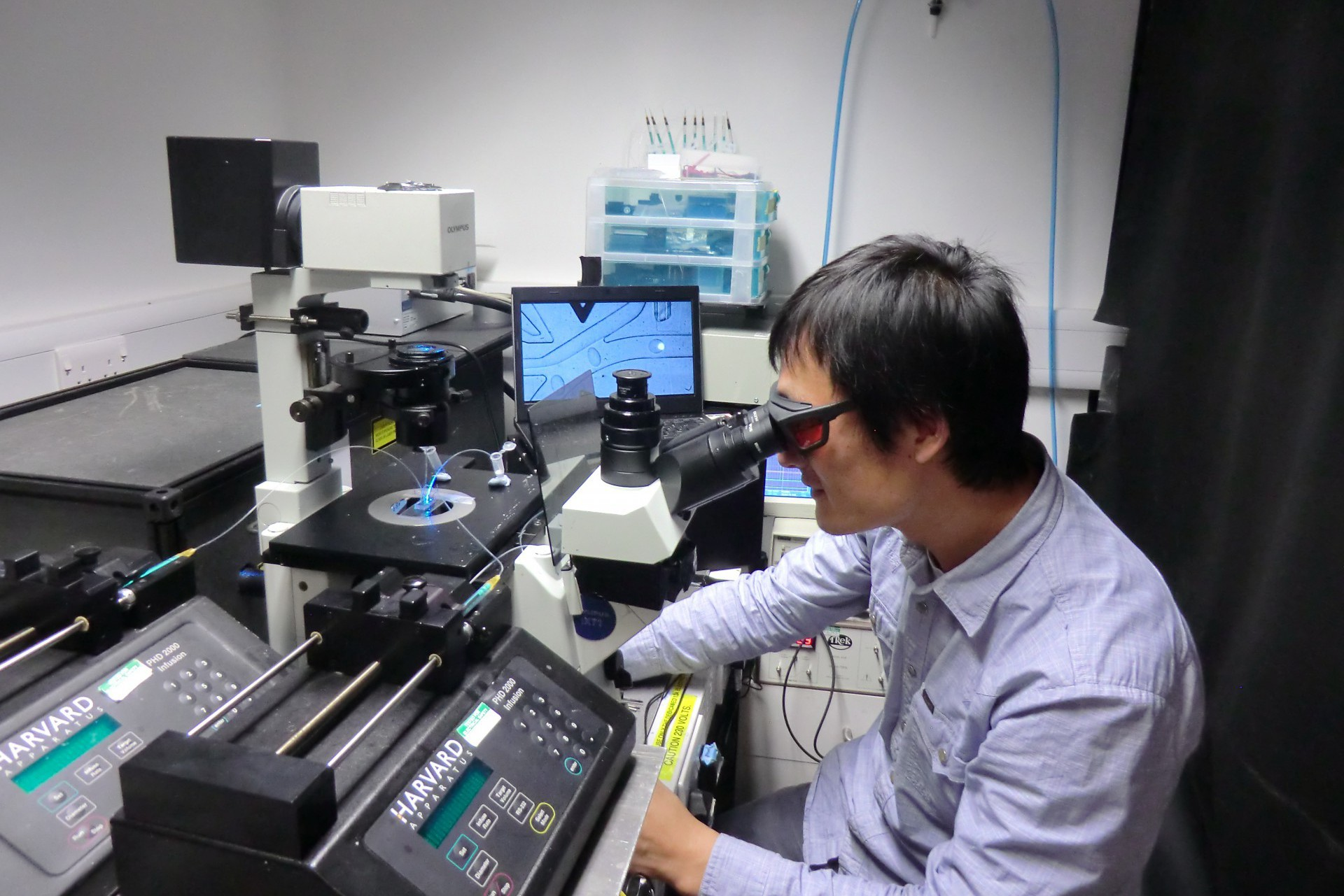 Scientist using single cell analysis system