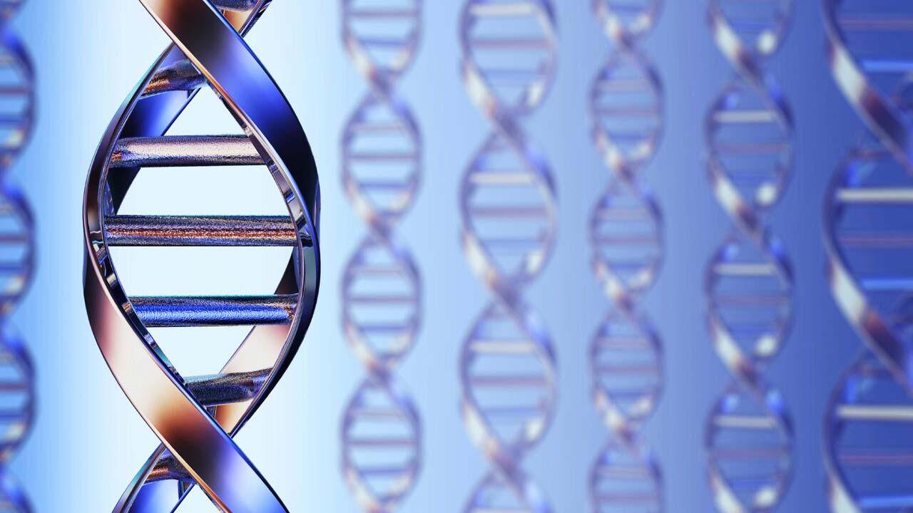 Enzyme evolution